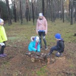 domček pre lesných trpaslíkov nechýbal ani vo Vracove